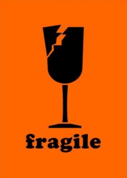 "#DL1561  2 x 3""   Fragile Label (Orange/Black)"